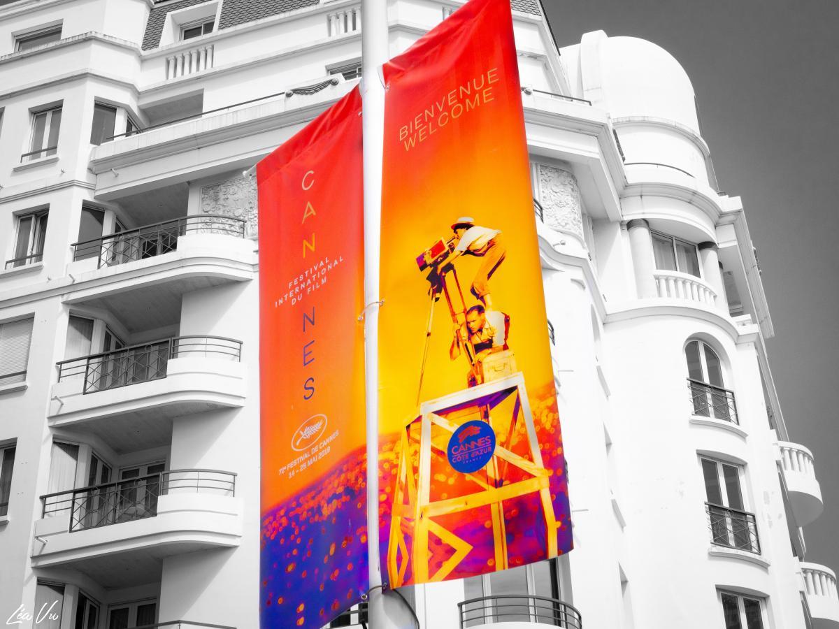 Demandez le programme pour le 72ème Festival de Cannes